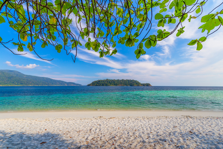 Photo pour beautiful white beach with tree tropical sea for holidays and relaxation  in lipe island thailand - image libre de droit