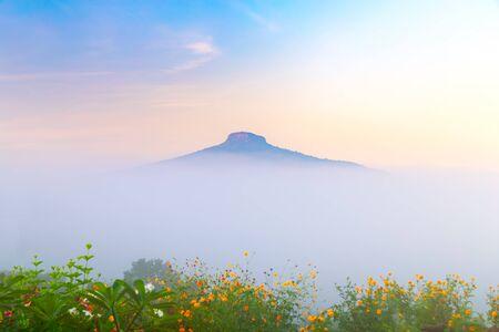 Photo pour natural landscape for relaxing in Phu Luang, Loei Province thailand - image libre de droit