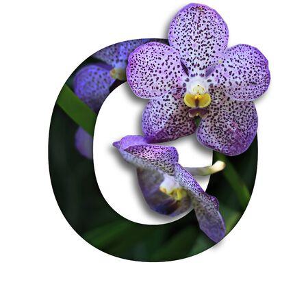 Foto de Font with flower O made form the flower for desing decoration - Imagen libre de derechos