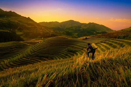 Photographer taking photo of Rice fields on terraced with wooden pavilion at sunset in Mu Cang Chai, YenBai, Vietnam.