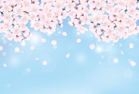 Illustration pour Cherry blossom - image libre de droit