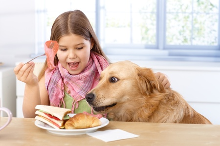 Little girl and pet dog having breakfast together, eating sandwitch.