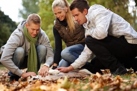 Photo pour Young friends having autumn fun in park, stroking dog, smiling. - image libre de droit