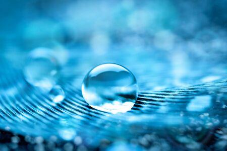 Photo pour Beautiful transparent water drops or rain water on soft background. Macrophotography. Desktop background. Selective focus. - image libre de droit