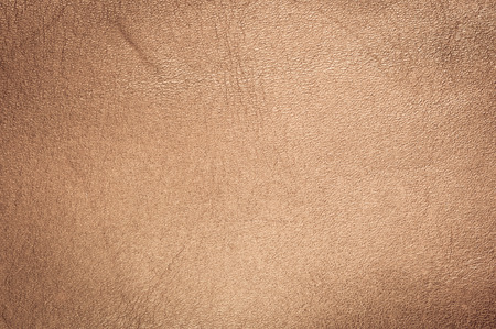 leather texture background / leather texture