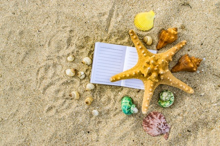 Notepad with pencil and starfish, shellfish on sand background or on the beach of sea using wallpaper for education, business photo. Take note of the product for book with paper concept or copy space and refreshing.