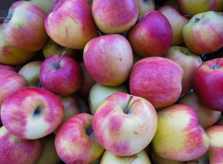 Photo for Fresh organic red apples in a large wooden box, close up, background - Royalty Free Image