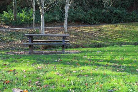 Foto de Wooden picnic table in a park during autumn - Imagen libre de derechos