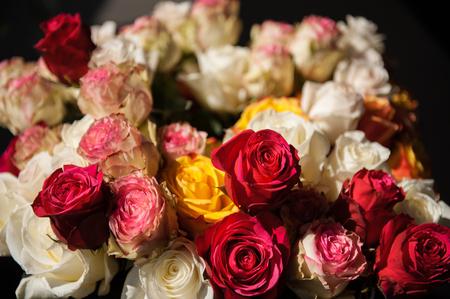 Photo pour Still life bouquet of roses - image libre de droit