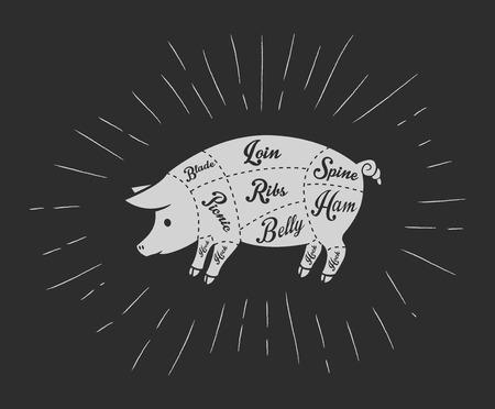 Illustration pour Pork meat cuts in vintage blackboard style - image libre de droit