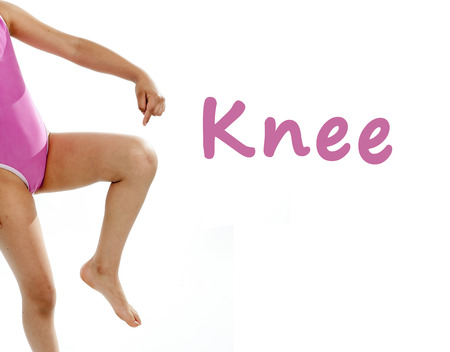 Photo pour  full length girl wearing a pink swimsuit pointing at her knee on a white background for a school anatomy or body part chart - image libre de droit