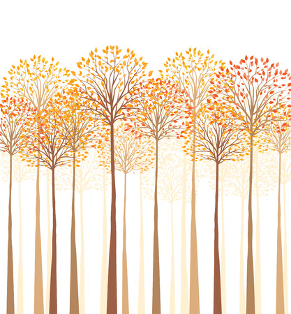 Vector autumn tree on a white background