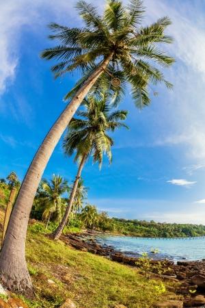 Beautiful tropical beach wit
