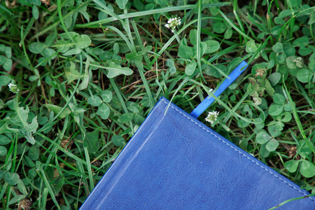 Blue notepad on the green grass in park.