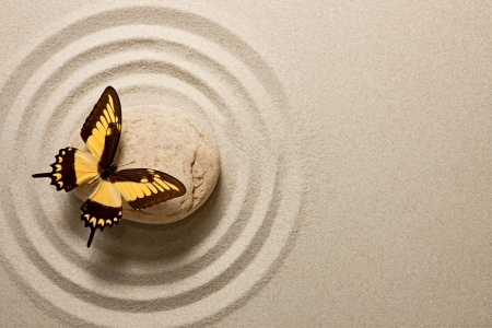 Zen stone with butterfly