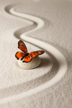 Photo pour Zen butterfly - image libre de droit