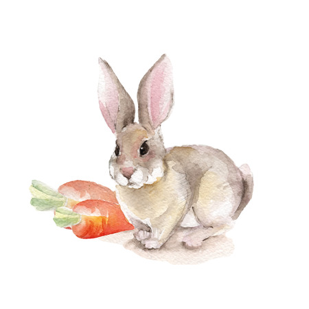 Foto de Rabbit and carrots. Vector illustration - Imagen libre de derechos
