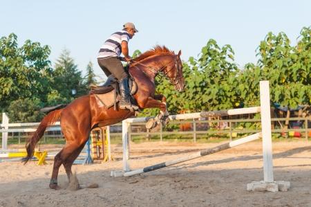 Horseback rider jumping over the bar