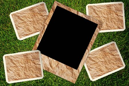 Vintage photo frame on the grass texture background.