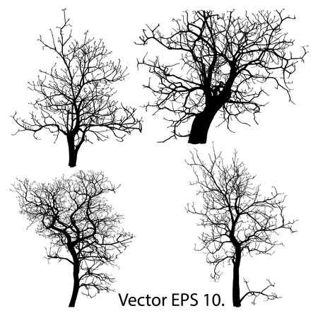 Set of Dead Tree without Leaves Vector Illustration Sketched, EPS 10
