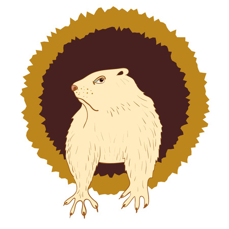 Sleepy Groundhog Marmot comes out of its hole. Vector illustration for Groundhog day 2 february. Vector sketch for greeting card of groundhog day.