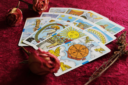 Tarot cards, dried rose buds and sprig of wormwood on bordeaux velvet background