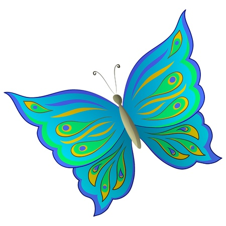 Butterfly with beautiful multi-coloured wings on a white background