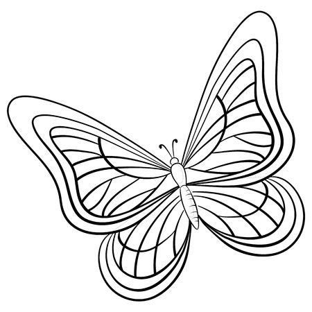 butterfly, hand-draw monochrome contours on a white background