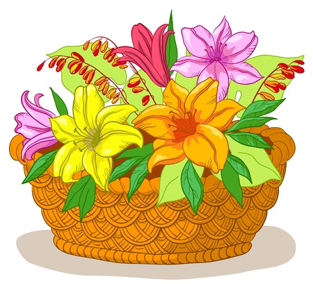 Illustration pour wattled basket with flowers lily and green leaves - image libre de droit