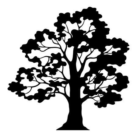 Oak Tree Pictogram, Black Silhouette and Contours Isolated on White Background. Vector
