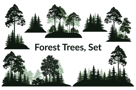 Illustration pour Set Isolated on White Background Landscapes, Green Coniferous and Deciduous Trees and Bushes Silhouettes, Fir, Pine, Maple, Acacia, Lilac. Vector - image libre de droit