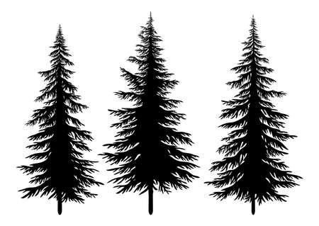 Illustration pour Set Christmas Fir Trees, Black Silhouettes Isolated On White Background. Vector - image libre de droit
