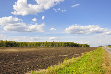 Photo pour Black field with trees far away. Cultivated area. Agriculture. Bright blue sky and green grass - image libre de droit