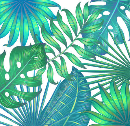 Illustration pour Background with tropical leaves. Tropical wallpaper. Isolated on white. - image libre de droit
