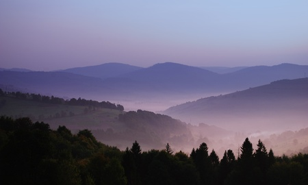 beautiful view of mountainsides in the morning fog above Carpatian mountains
