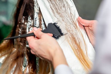 Photo for Hair coloring in process close up back view. - Royalty Free Image