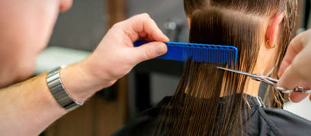 Foto für Close up of hands of male hairdresser cutting long hair of young woman holding scissors and comb at the salon. Rear view - Lizenzfreies Bild