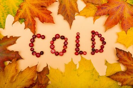 Photo for Autumn leaves on yellow background and COLD text with cranberries - Royalty Free Image