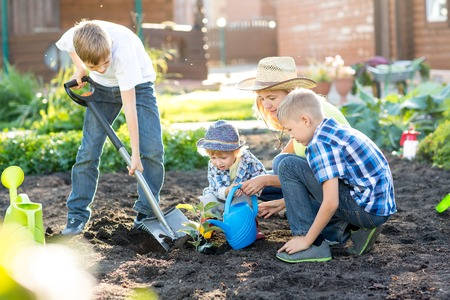 Photo for Woman with three kids sons planting a tree and watering it together - Royalty Free Image