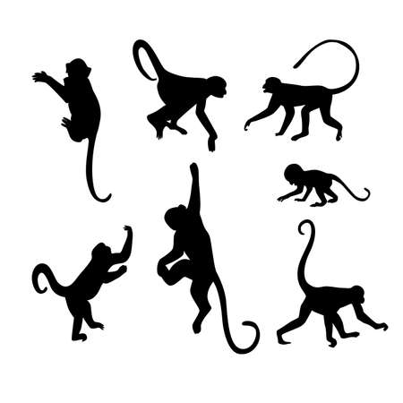 Illustration for Monkey Silhouette Collection - Illustration - Royalty Free Image