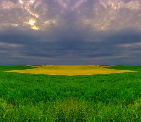 Photo for Surrealistic spring countryside with green yellow fields before sunset - Royalty Free Image