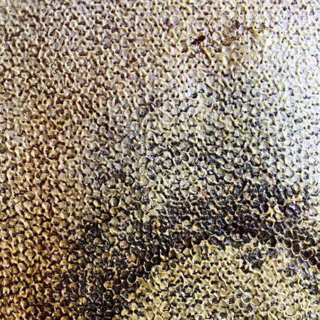 Photo pour Abstract hexagon structure is honeycomb from bee hive filled with golden honey. Honeycomb summer composition consisting of gooey honey from bee village. Honey rural of bees honeycombs to countryside. - image libre de droit