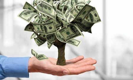 Photo for Money Tree, Currency, Growth. - Royalty Free Image