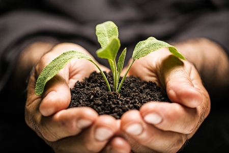 Foto de Agricultural. - Imagen libre de derechos