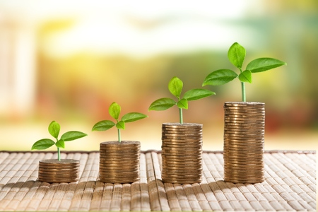 Photo pour coins and money growing plant for finance and banking, saving money or interest increasing concept - image libre de droit