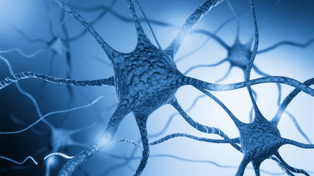 Photo for Neurons cells close up - Royalty Free Image