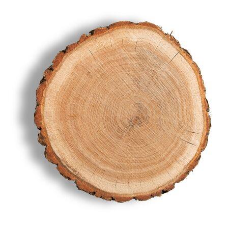 Foto de Log Cross Section - Imagen libre de derechos