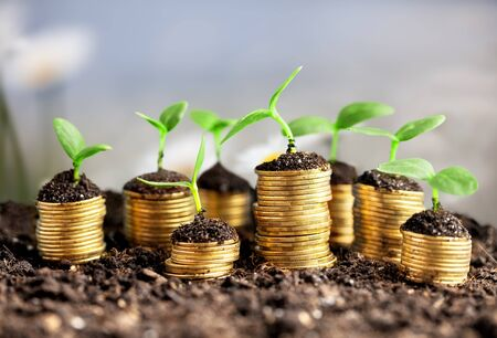 Photo pour Coins in soil with young plants on background - image libre de droit