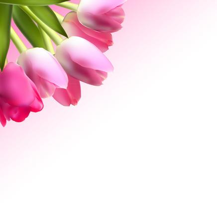 Illustration pour Beautiful Pink Realistic Tulip Background Vector - image libre de droit