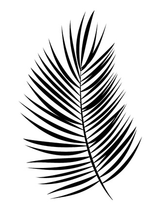 Illustration for Palm Leaf Vector Background Isolated Illustration EPS10 - Royalty Free Image
